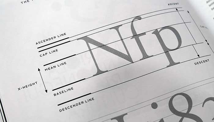 framework-of-type