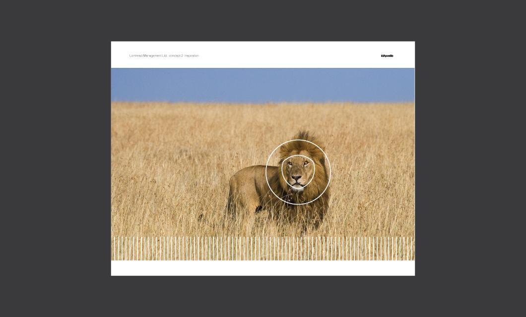 Alternative-concept-lionhead-branding-deck-Inspiration