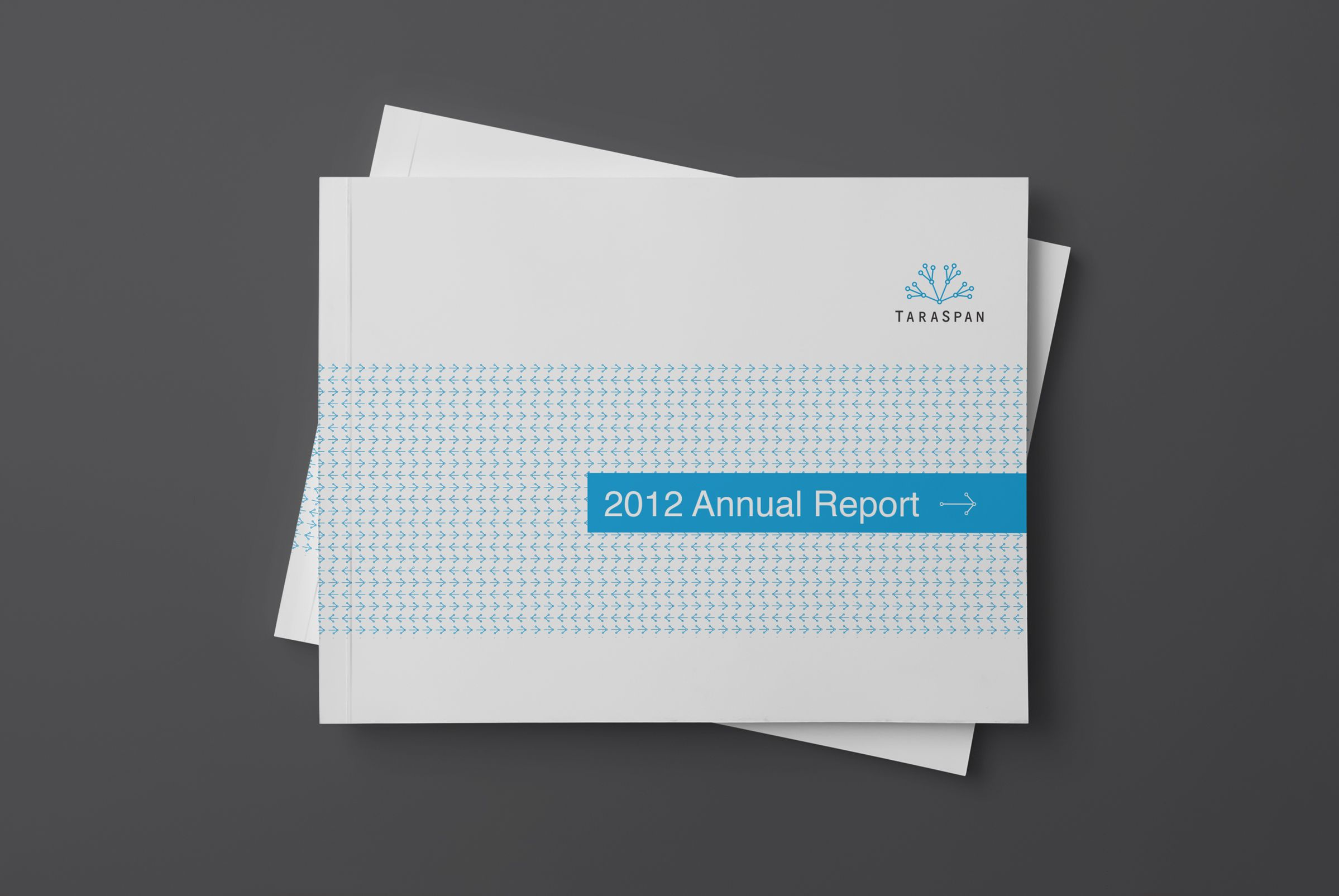 Annual Report for TaraSpan Group, India Business Accelerator by Ottawa Graphic Designer idApostle