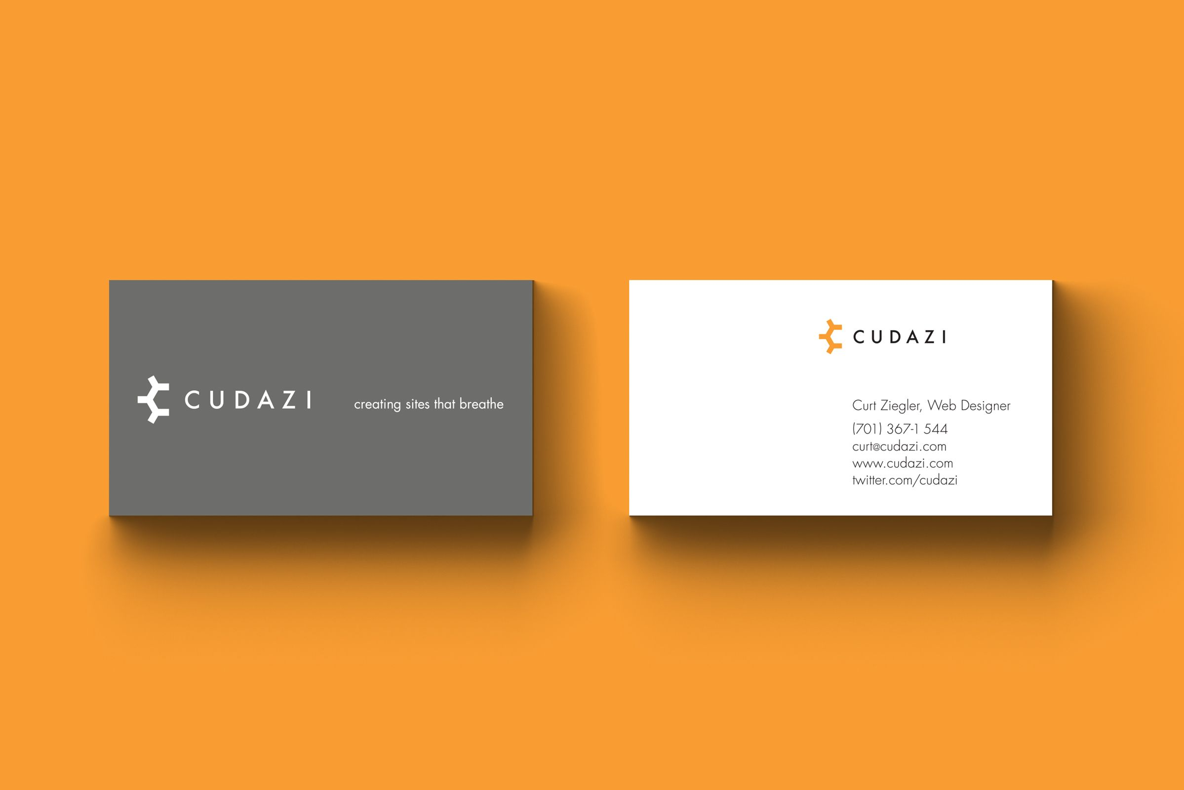 Logo for Cudazi, Web Developer by Ottawa Graphic Designer idApostle